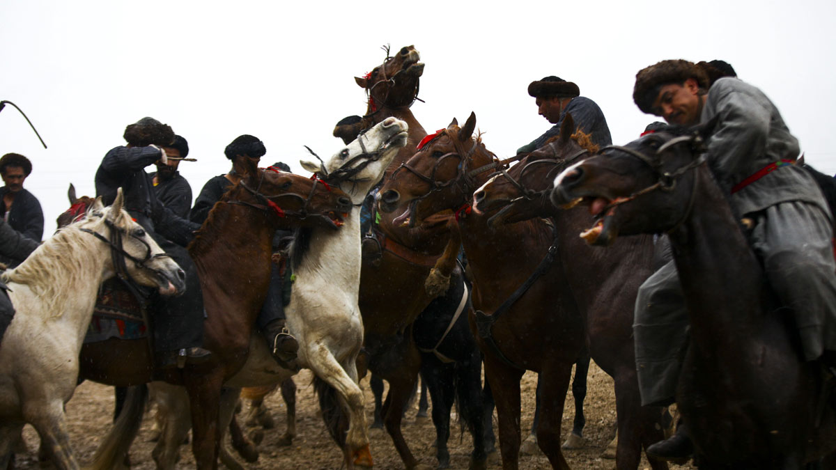 buzkashi in afghanistan With a swirl of dust, sweat and pounding hooves, the annual season of buzkashi, afghanistan's national sport, is in full swing a game of horsemanship that traces its roots to the medieval.